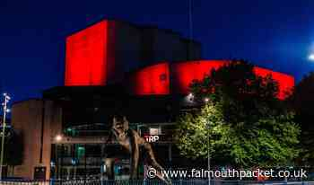 Plymouth Theatre Royal and St Ives Leach Pottery Arts Council fund - Falmouth Packet