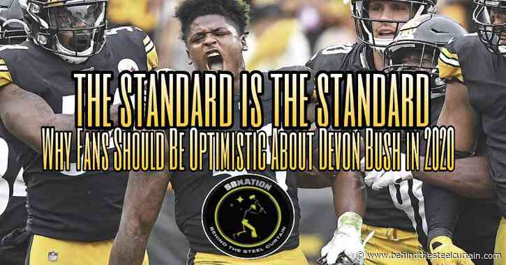 Podcast: Why Steelers fans should be even more optimistic about Devin Bush in 2020