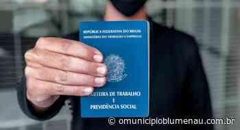 Procurando emprego? Confira vagas abertas no Sine e nas agências de Blumenau - O Município Blumenau