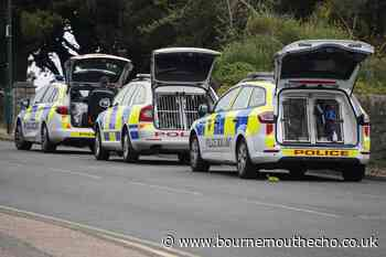 Alleged murder in Boscombe: Police investigations continue