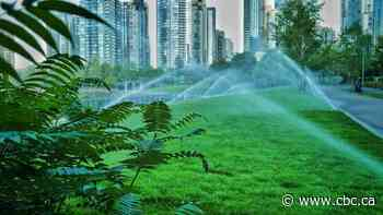 No lawn watering restrictions for Windsor, but just because you can, should you?