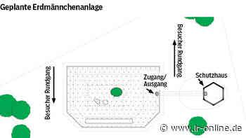 Tierpark Herzberg: Erdmännchen bekommen ein Zuhause - Lausitzer Rundschau