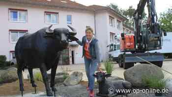 Erlensee: Wasserbüffel-Skulpturen stehen auf dem Rathausplatz - op-online.de