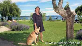 Tutzing legt Hunde an die Leine - Süddeutsche Zeitung