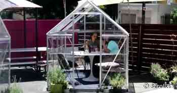 Watch: A cafe in Los Angeles has come up with private glass cabins to ensure physical distancing - Scroll.in