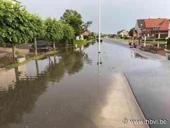 Maaseikerbaan in Opitter pas vernieuwd, maar kampt al met wateroverlast - Het Belang van Limburg