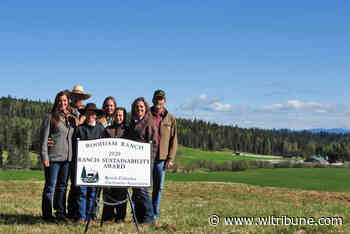Woodjam Ranch in Horsefly winners of BC Cattlemen's sustainability award - Williams Lake Tribune