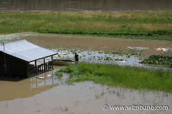 Cariboo vegetable farmer swamped by Fraser River flooding - Williams Lake Tribune
