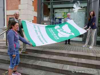 Aktionstag: Erkner zeigt Flagge für den Frieden - Märkische Onlinezeitung