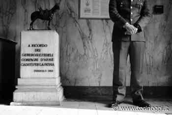 """Morici, il vincitore della prima Pinerolo Photo Marathon che """"taglia la testa alla Cavalleria"""" - TorinOggi.it"""