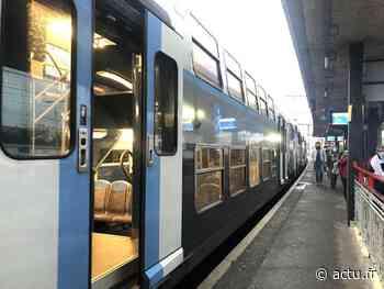 RER D. Vert de Maisons, Maisons-Alfort et Créteil Pompadour ne sont pas desservies ce mercredi - actu.fr