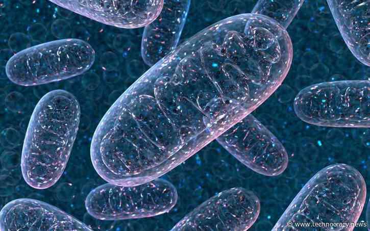 Major Gene Editing Breakthrough Surpasses CRISPR