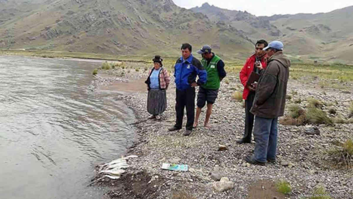 Acusan a alcaldes de Melgar, llalli, cupi y umachiri de manejar conflicto de la cuenca llallimayo a su favor y piden revocatoria - Pachamama radio 850 AM