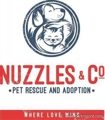 New executive director Lindsay Ortega wants to increase Nuzzles & Co.'s pet rescue outreach - The Park Record