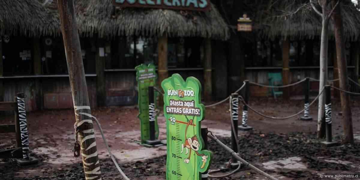 Buin Zoo apuesta al público - Publimetro Chile