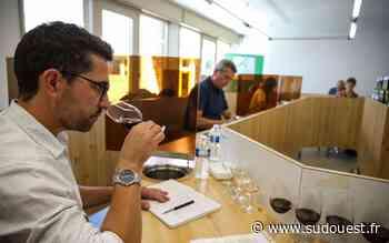 Des séances de dégustation à la Vinopôle de Blanquefort - Sud Ouest