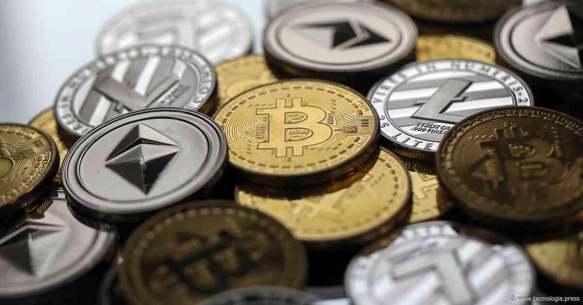 7 reglas que ayudaron a los traders de criptomonedas a hacerse millonarios - TG Press