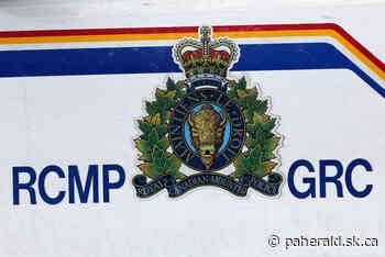 North Battleford homicide suspect arrested in Alberta - Prince Albert Daily Herald