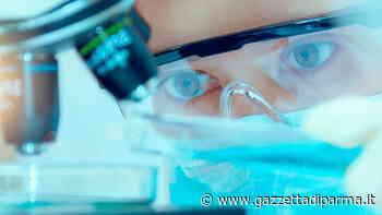 E made in Parma l'unico progetto italiano finanziato dalla Leukemia Research Foundation - Gazzetta di Parma