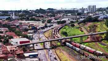 Araraquara é uma das 3 cidades escolhidas para projeto piloto de rastreamento da Covid-19 - G1