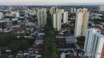 Ritmo de novas confirmações de Covid-19 em Araraquara diminui de 30% para 18% em uma semana - G1