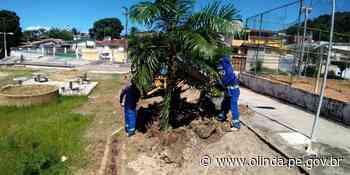 Prefeitura de Olinda realiza serviços de manutenção em ruas, avenidas e praças da cidade - Prefeitura de Olinda