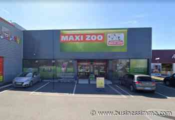 Saint Dizier : LMA Invest acquiert les murs d'un magasin - Business Immo