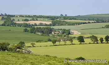 Britain concreted over green fields equivalent to the size of Dorset in the past 25 years - Daily Mail