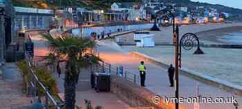 Dorset Police thanks public for 'largely peaceful weekend' - LymeOnline