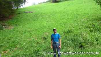 Hornberg: Landwirte warten auf Fördergelder - Hornberg - Schwarzwälder Bote