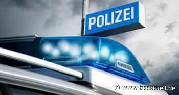 Riedlingen: Polizei fasst drei Jugendliche Serientäter - BSAktuell