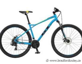 Child's bike stolen in Alliston - BradfordToday