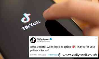 'We're back in action': TikTok says its earlier glitch was due to 'higher traffic than normal'