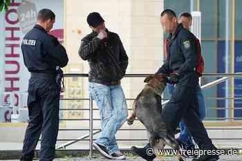 Razzia im Park - Polizeihund trainiert - Freie Presse