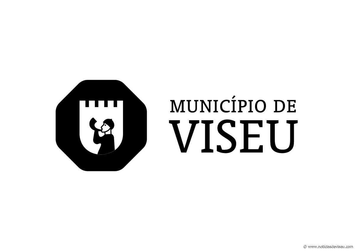 Câmara de Viseu com saldo positivo de 855 mil euros em 2019 - Notícias de Viseu