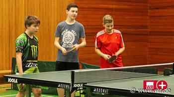 Beim Tischtennis-Nachwuchs bröckelt es in Wittgenstein - WR