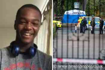 Victim of stabbing murder in Dulwich named