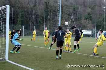 Il Monteriggioni nel calcio giovanile che conta: promossi nel campionato d'élite toscano - Siena News - Siena News