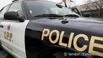 OPP seek public help in Lambton shores robbery investigation - CTV News London