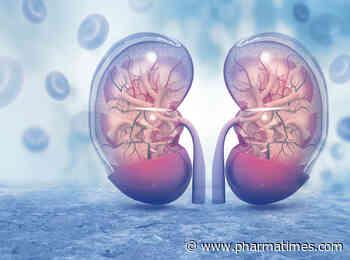 Bayer's finerenone hits targets in diabetes/kidney disease trial