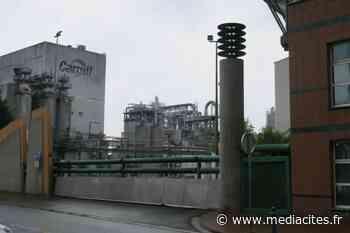 Cargill Haubourdin, l'usine « indispensable » qui licencie en masse - Mediacités