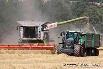 Getreide-Bauern müssen Anfeindungen hinnehmen - Freie Presse