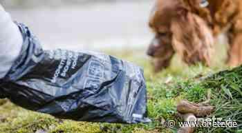 Uneinsichtigen Hundehaltern drohen in Vilseck Bußgelder - Onetz.de