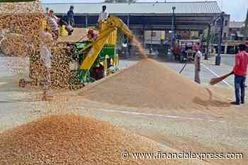 Govt's wheat procurement touches record high of 38.98 million tonnes so far in 2020-21