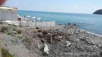 Raccolta firme per la tutela della costa fra Albenga ed Alassio - Liguria Notizie