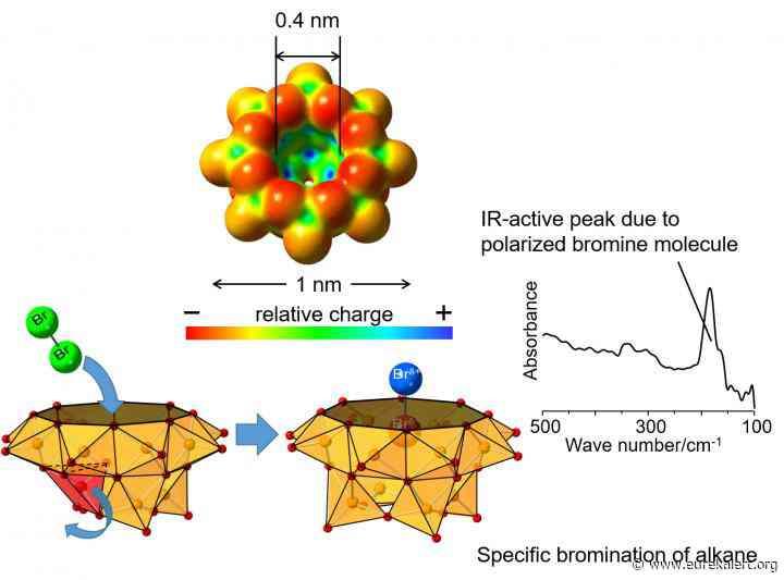 Polarization of Br2 molecule in vanadium oxide cluster cavity and new alkane bromination