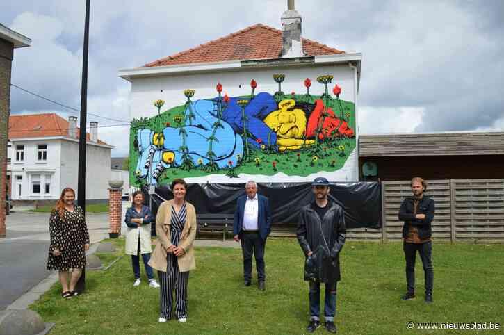 Muurschilderij fleurt speelplein Tuinwijk op