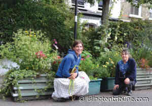 Well done the gardeners, but the council must do better - Islington Tribune newspaper website