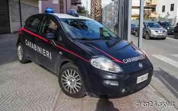 Droga a Palermo, spaccio nel quartiere Zisa: arrestato un 36enne - Sky Tg24