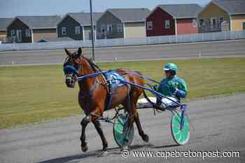 Glace Bay horse draws the rail for Governor's Plate final - Cape Breton Post